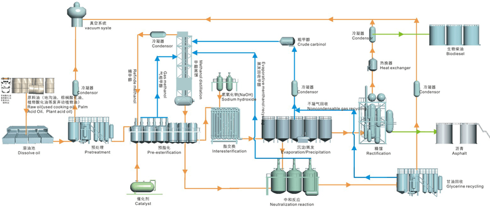 Biodiesel Production Line Production Process